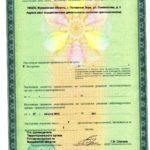 2 Лицензия на медицинскую деятельность